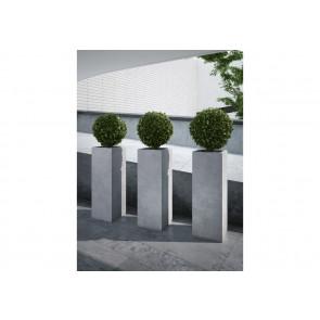 Donica Pillar