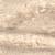 brzozowy